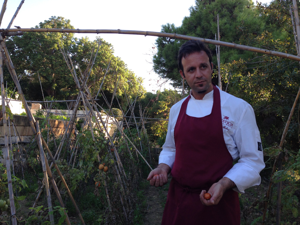 Saul-in-the-Kitchen-Garden