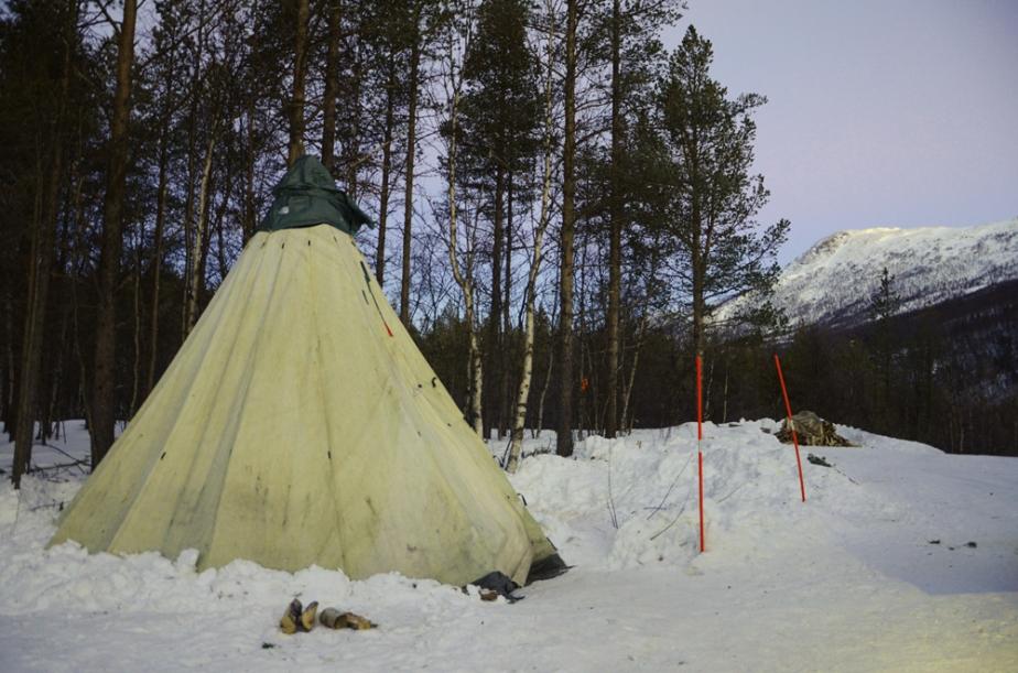 The lavvo tent